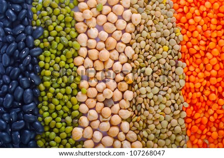 Different kinds of bean seeds - stock photo