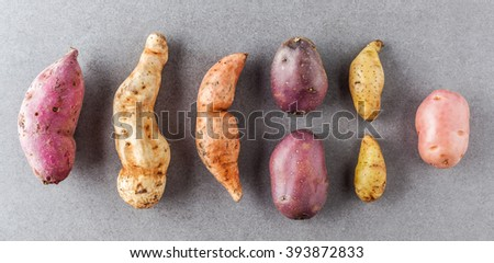 Different kinds of potatoes flat lay on stone surface. - stock photo