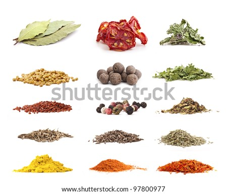 Different spices and herbs isolated on white background, includes soft shadows, selective focus - stock photo