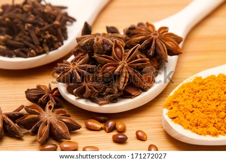 Different spices on spoons in light wooden table background - stock photo