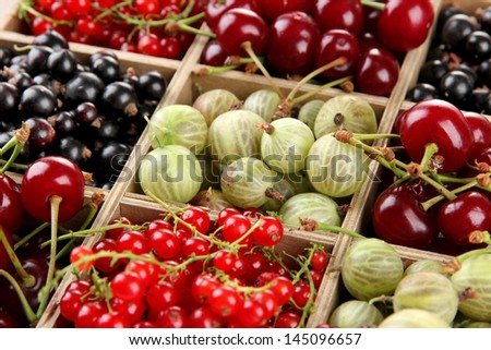Different summer berries in wooden crate, close up - stock photo