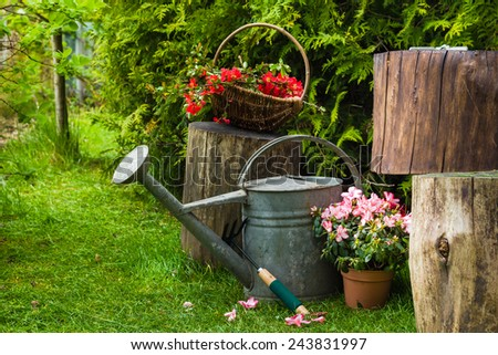 Different tools and plants in the spring garden - stock photo