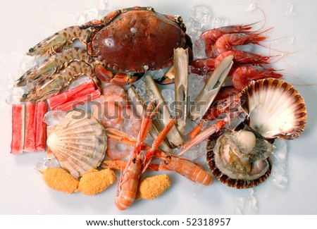 different type of seafood on white background - stock photo