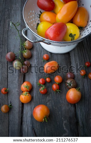 Different varieties of tomatoes - stock photo