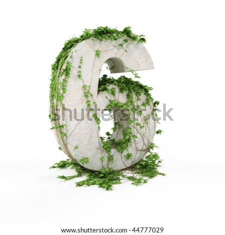 Digit six threads covered with ivy isolated on white background. - stock photo