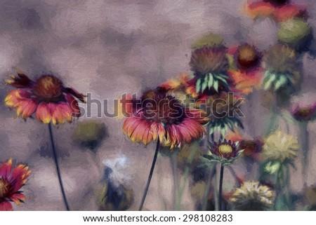 Digital art, artistic composition Echinacea Sombrero Salsa Red (Coneflower) multicolor background - stock photo