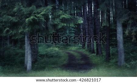 Digital art, paint effect, twilight spooky woodland road                               - stock photo