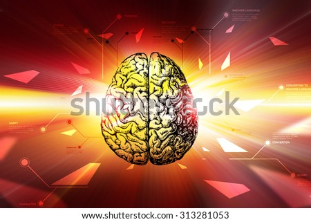 Digital brain in color background - stock photo