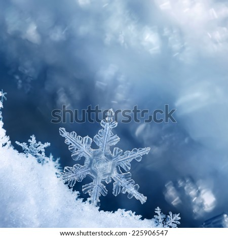 Digital composite of snowflakes and frost. - stock photo