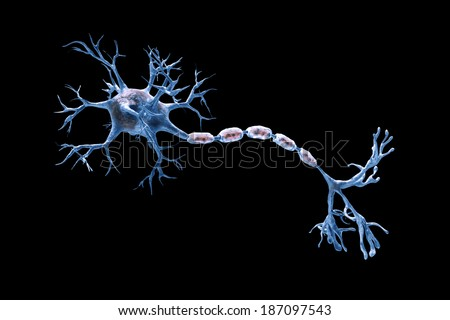 digital illustration neurons - stock photo