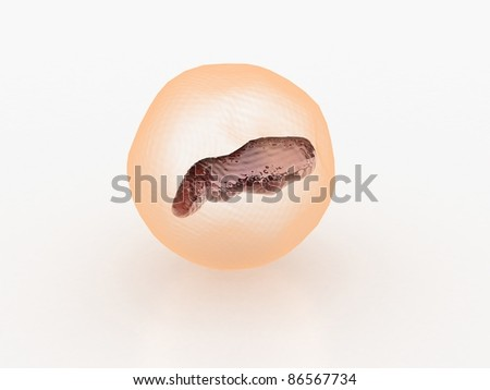 Digital illustration of CELL - stock photo
