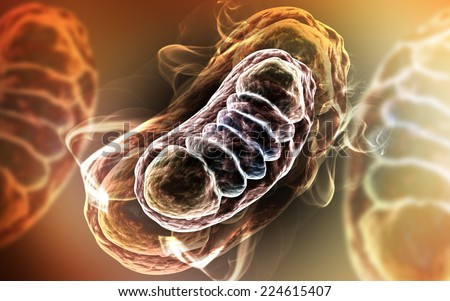 Digital illustration of Mitochondria in colour background  - stock photo