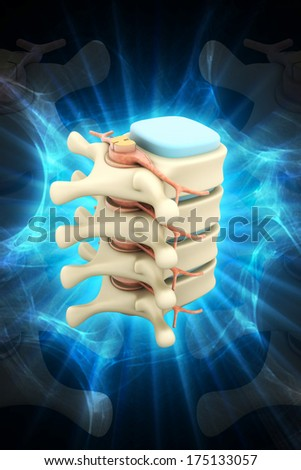 Digital illustration of Spinal column with nerves and discs in color background - stock photo