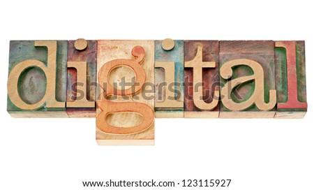 digital - isolated word in vintage letterpress wood type blocks - stock photo