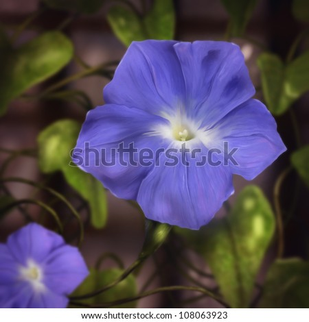 digital painting of blue morning glory flowers surrounded by vines - stock photo