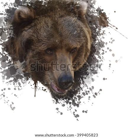 Digital Painting of Brown Bear Head - stock photo