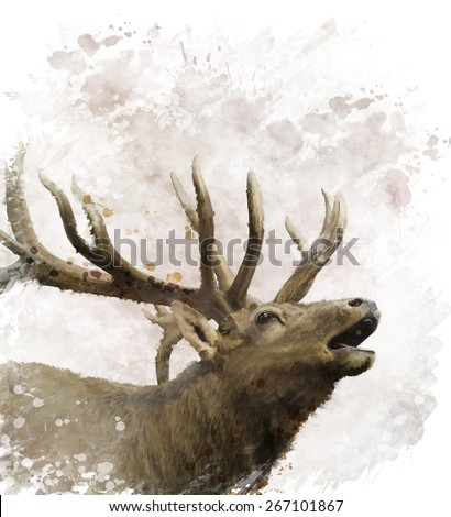 Digital Painting Of Bull Elk - stock photo