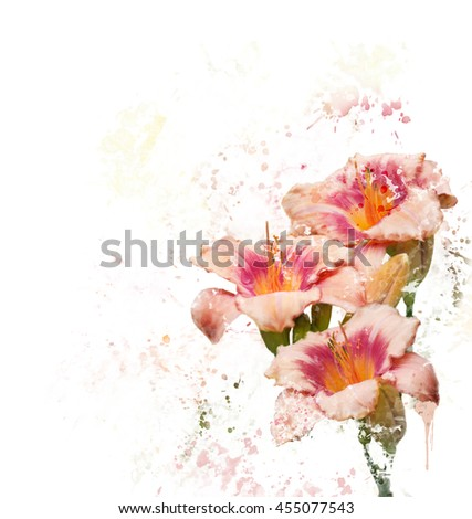 Digital painting of Day-lily Blossoms - stock photo