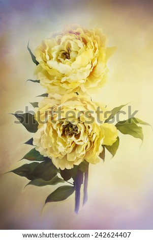 Digital painting of delicate beautiful yellow peonies. - stock photo