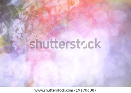 Digitally Altered Verbena Floral Background - stock photo