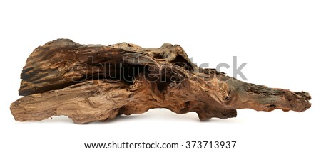 Dilapidated wooden snag isolated on a white background - stock photo