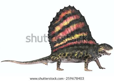 Dimetrodon Permian Reptile - Dimetrodon was a carnivorous mammal-like reptile which lived in the Permian Era of North America and Europe. - stock photo