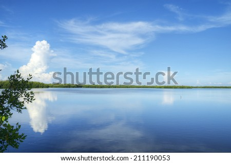 Ding Darling Nature Preserve in Sanibel Island, Florida. - stock photo