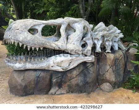Dinosaur Bone - stock photo