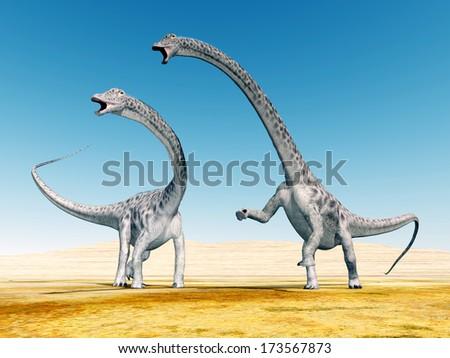 Dinosaur Diplodocus Computer generated 3D illustration - stock photo