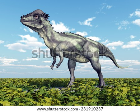 Dinosaur Pachycephalosaurus Computer generated 3D illustration - stock photo