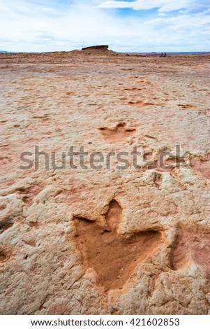 Dinosaur tracks in a remote place in Arizona, USA - stock photo