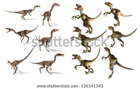 dinosaurs collection. Coelophysis and Velociraptor - stock photo