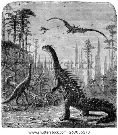 Dinosaurs, Stegosaurus and Compsognathus in an Araucaria landscape., vintage engraved illustration. Earth before man 1886. - stock photo