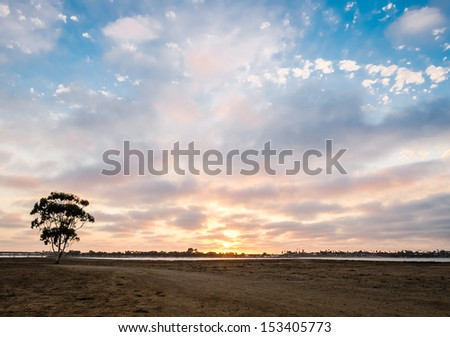 Dirt Path and Tree Sunset on Fiesta Island, Mission Bay San Diego, California USA, Tourism San Diego California - stock photo