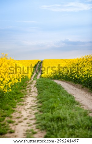 Dirt path through farm country with yellow oilseed rape field and blue sky - stock photo