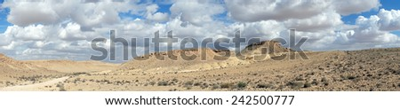 Dirt road and mountain near crater RAmon in Negev desert, Israel                                - stock photo