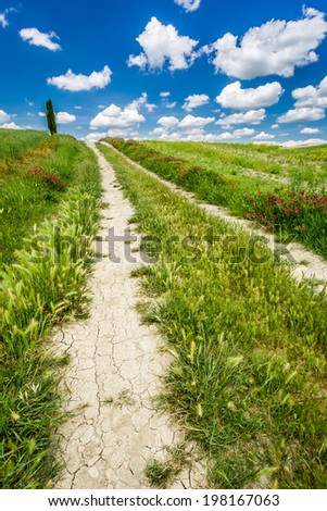 Dirt road between green hills in Tuscany - stock photo