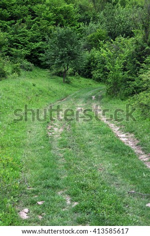 Dirt road in the woods in Bulgaria - stock photo