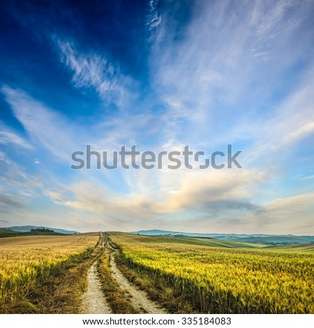 dirt road in wheaten field - stock photo