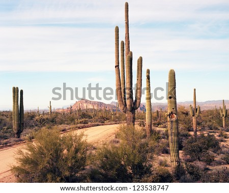 Dirt road leading off into the desert mountains - stock photo