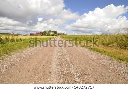 Dirt track through agricultural land in summer - stock photo