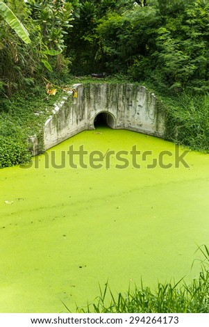 Dirty green toxic water contaminated with algae - stock photo