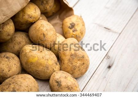 Dirty raw rustic white potatoes - stock photo
