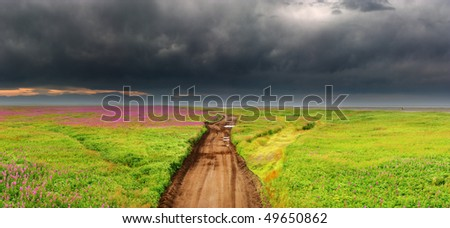 Dirty road in blossoming field, Kamchatka - stock photo
