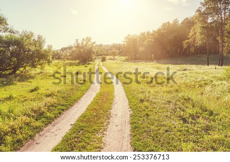 dirty road in wood in sunset - stock photo