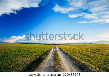 Dirty rural sandy road in green wheat field. Spring season. Meadow and pathway, sunset, sunrise time. - stock photo