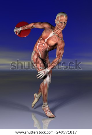 discobolo anatomia - stock photo