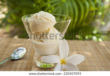 Dish of vanilla ice cream with with a palm tree and plumeria flower - stock photo