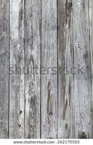 Distressed White Weathered Wood Texture - stock photo