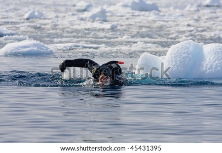 Diver among the ice - stock photo